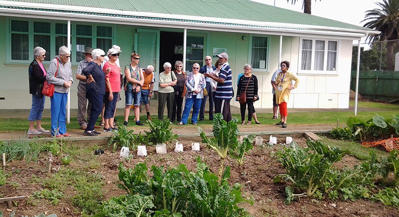 stadium teaching garden - Our Gardens