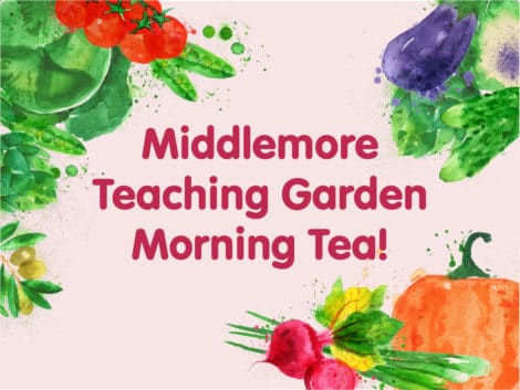 MM morning tea 12 470x353 - Shared Morning Tea