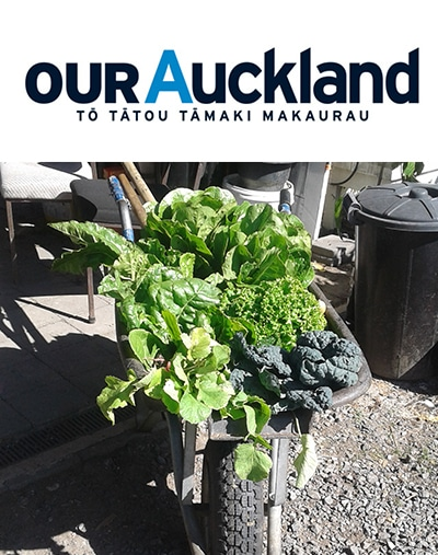 OurAuckland copy - What's On
