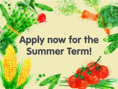 summer term 470x353 - Our Summer teaching term is here!