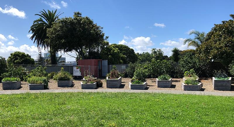 GARDENS 0001 TOIA - Our Gardens